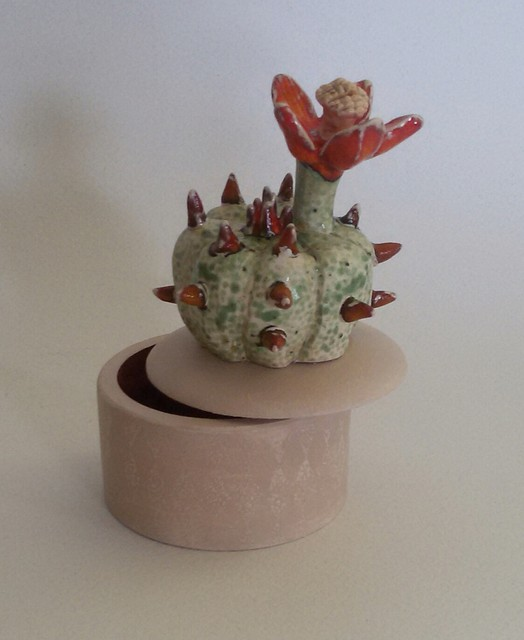 Dėžutė su kaktusu